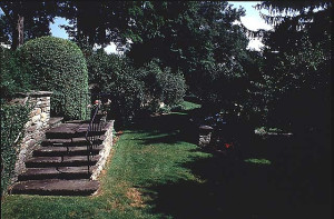 The Holbrook-Betsy Bower Garden, Wellsville, NY, documented in 2000. Photo by Betsy Holbrook Bower. Accession # NY 630.